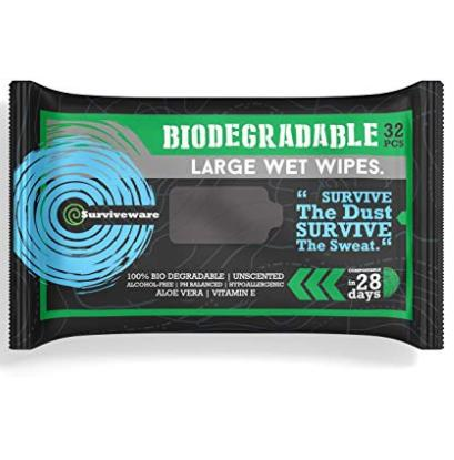 Biodegradable wet wipes
