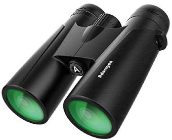 Compact Binocular with Low Light Night Vision