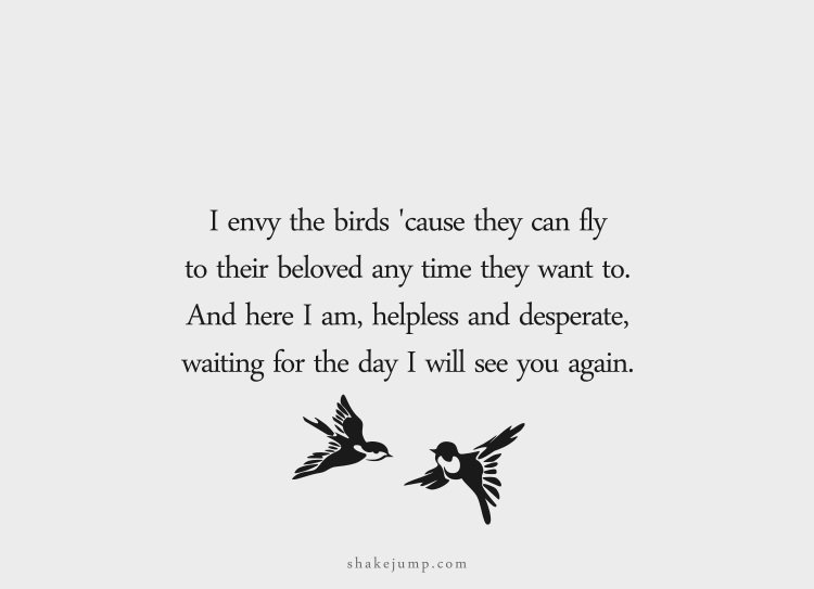 I envy the birds 'cause they can fly to their beloved any time they want to. And here I am, helpless and desperate, waiting for the day I will see you again.