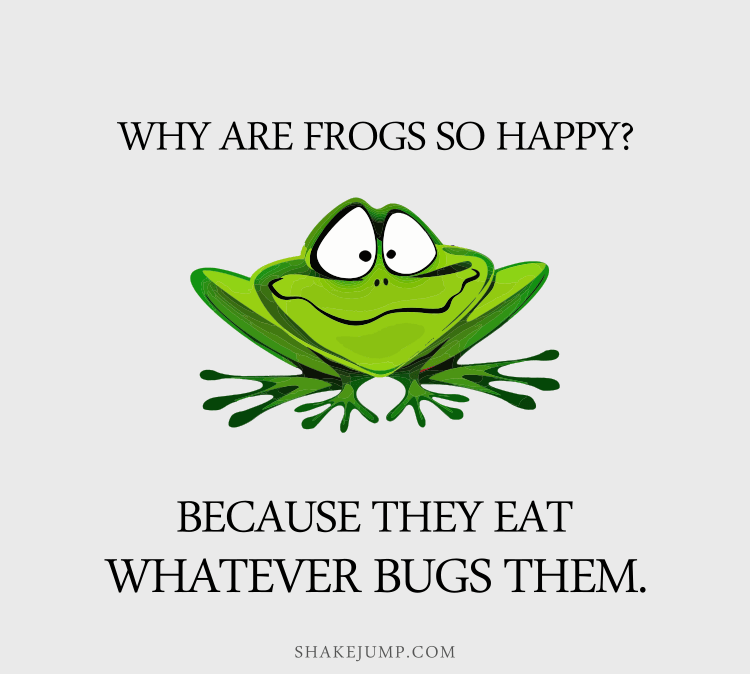 Why are frogs so happy? They eat whatever bugs them.