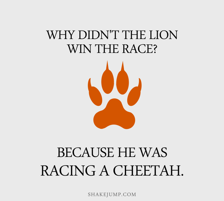 Why shouldn't you gamble in the jungle? There's too many CHEETAHS!