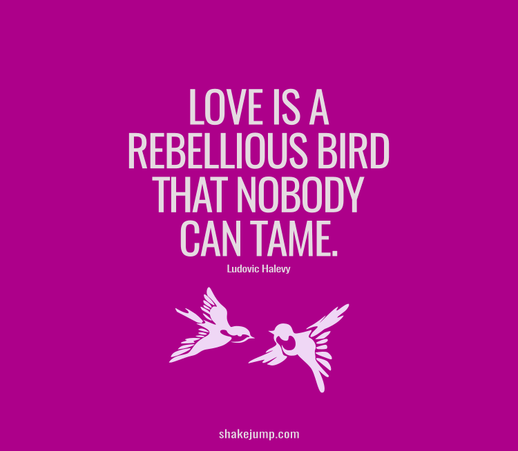 Love is a rebellious bird that nobody can tame.