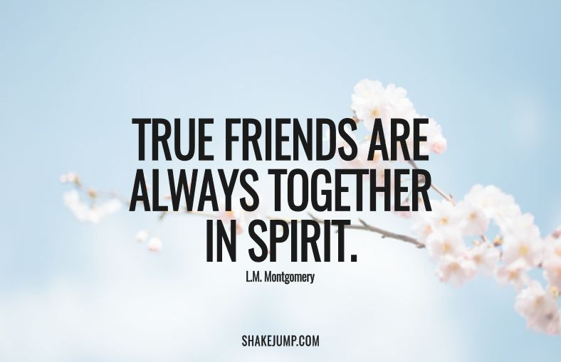 74 Quotes About True Friends And Why They Are Special