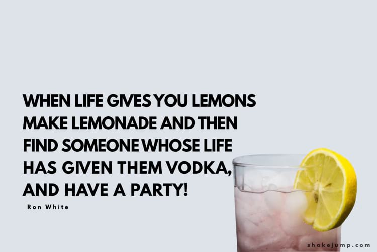 When life gives you lemons, you should make lemonade and then try to find someone whose life has given them vodka, and have a party.