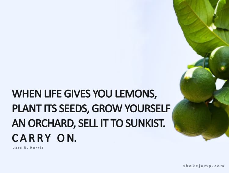 When life gives you lemons, plant its seeds, grow yourself an orchard, sell it to Sunkist. Carry on.