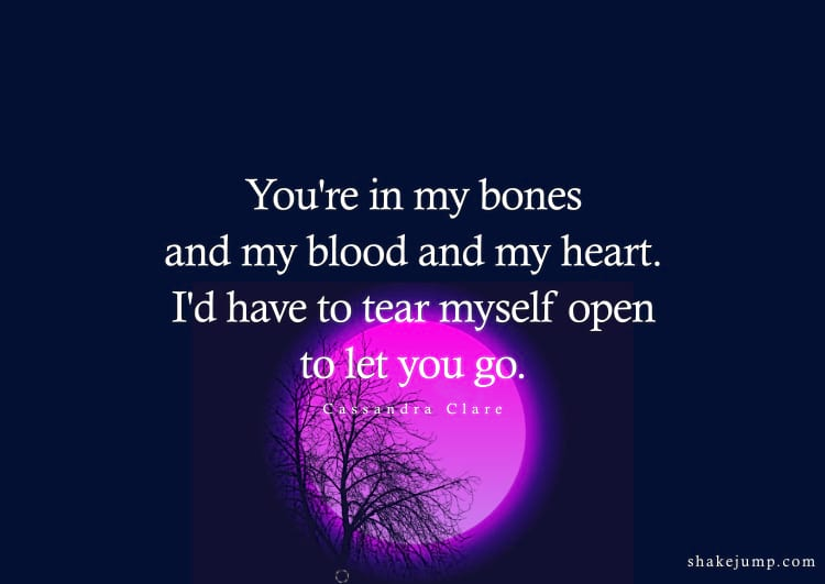 You're in my bones and my blood and my heart. I'd have to tear myself open to let you go.